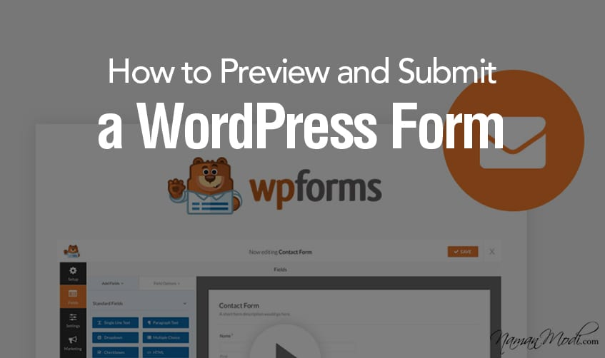 How to Preview and Submit a WordPress Form